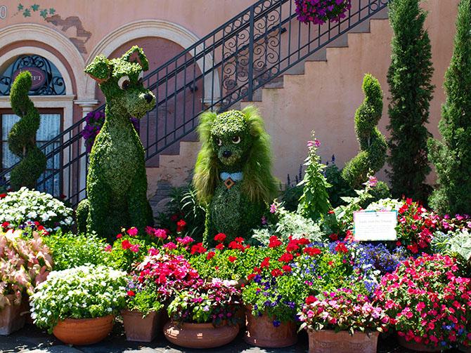 Lady Tramp topiary Epcot Flower Garden Festival