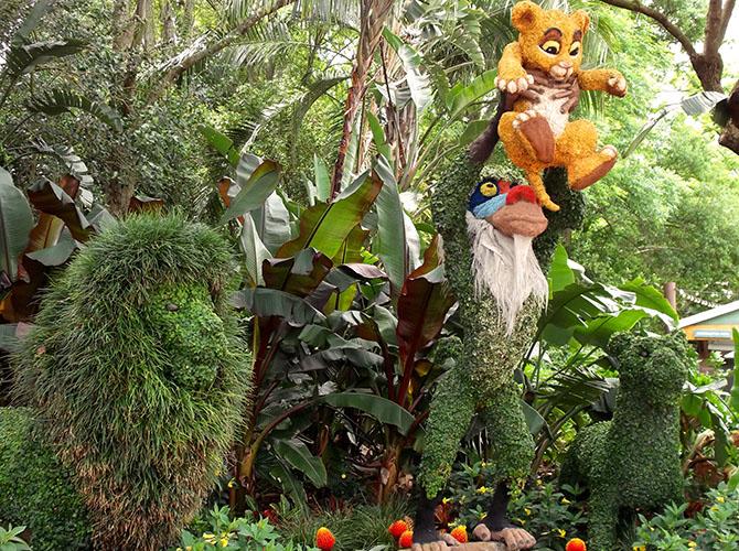 Lion King topiary Epcot Flower Garden Festival