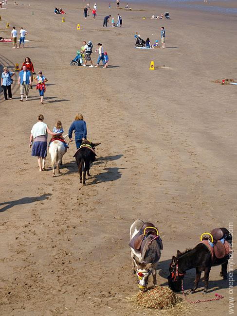 Old fashioned Donkey rides on Whitby beach in North Yorkshire